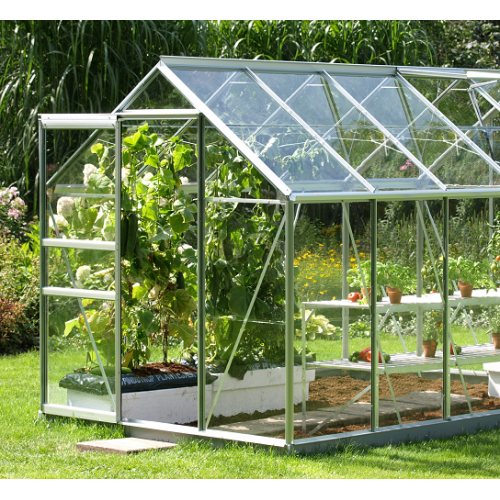 Greenhouse Cut to Size Perspex Plastic Panels - Trent Plastics